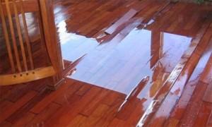 Nhà 5 tầng hỏng hết sàn gỗ chỉ vì phễu thu nước