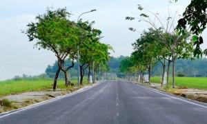 Người Việt thích gom mua đất vì sao?