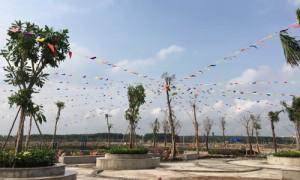 Giá đất Đồng Nai, Long An nổi sóng theo cơn sốt đất TP.HCM