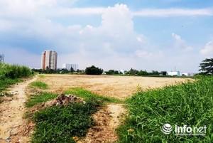 Khách TP.HCM đặt cọc mua căn hộ quận 8, bị ép mua dự án tận quận 7